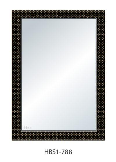Gương soi phòng tắm HBS1-788