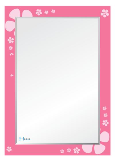 Gương soi phòng tắm HBS1-760/HBS2-760